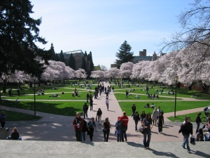 university_of_washington_quad_spring_20071